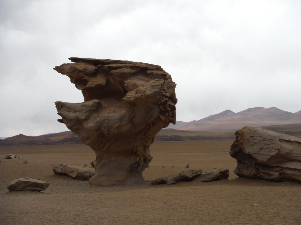 arbre de pierre